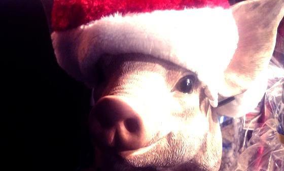 {Noël n°2}{Recette n°1} 2 MugCakes à faire absolument #Anaïs