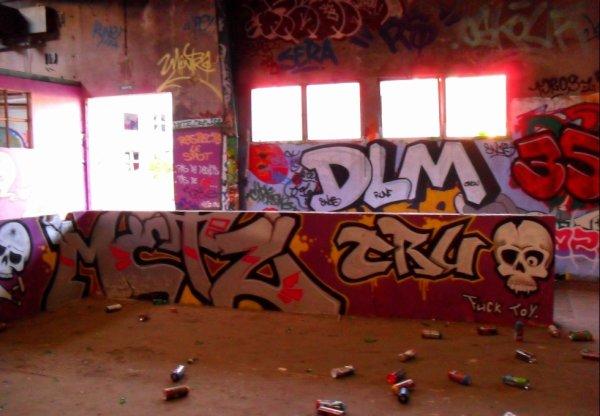 DLM - 35 Click - Metz Crew