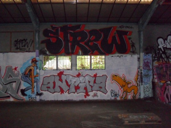 Strew - Antifa