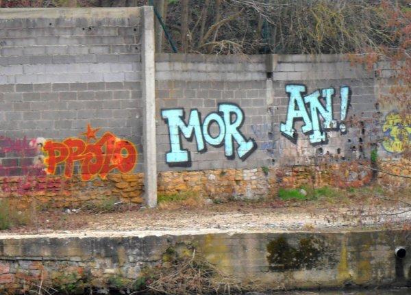 Prolos - Moran