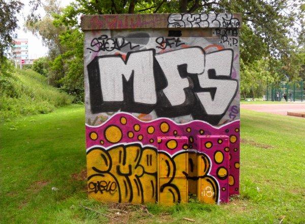 MFS - Smile