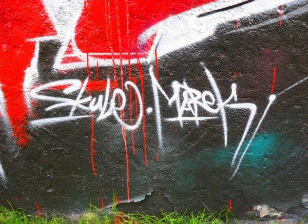 Skule - Marek