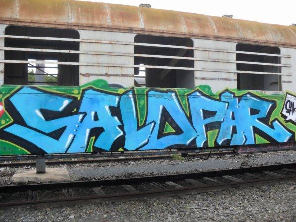 Salopar