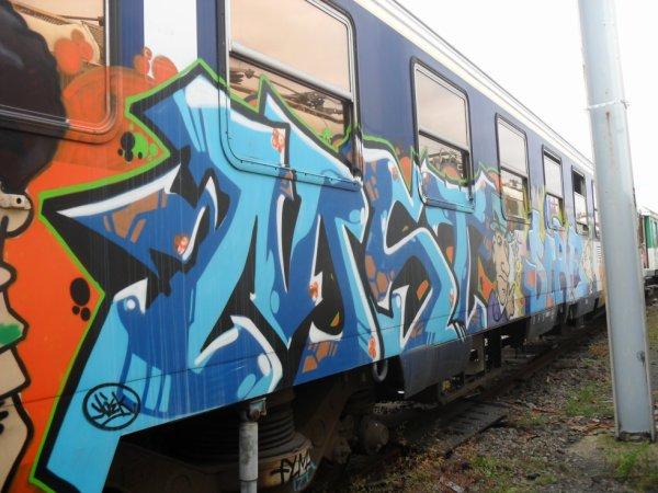 MST - Sire