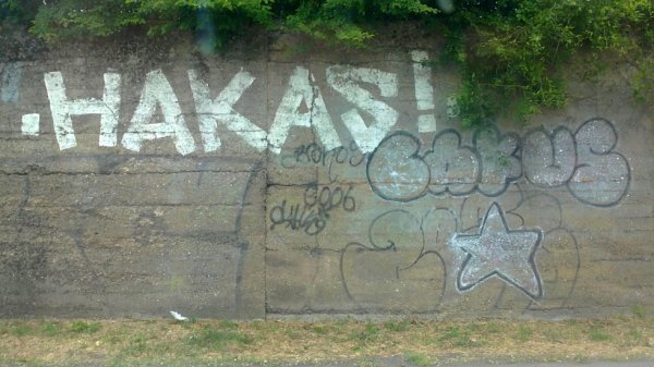 Hakas - Bakus