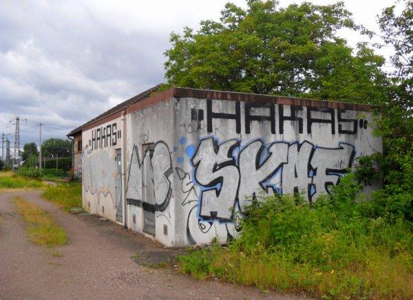 MC - Hakas - Skaf