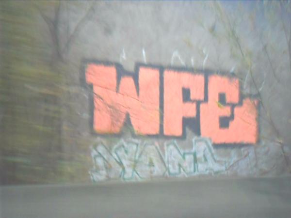 WFE - Dyona