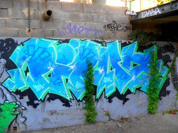 Piroz - Emsa - Mare - Acre - BCV