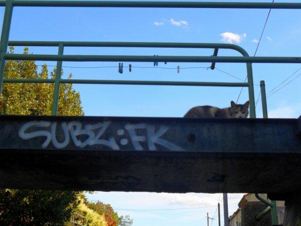 Subz - FK