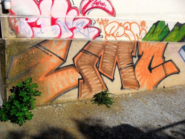 P1K - ZMC