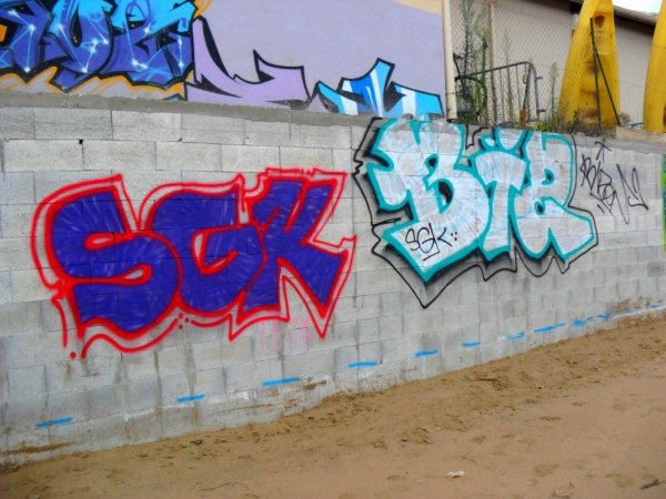 SGK - Bizon