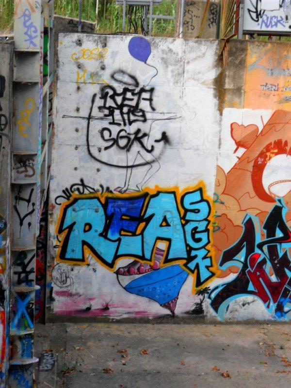 REA - SGK