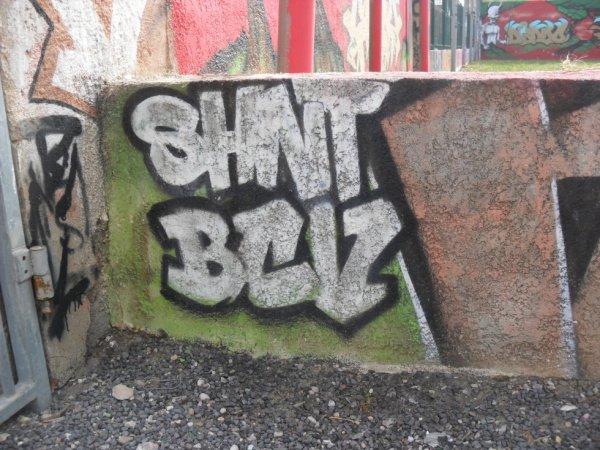 Shnt - BCV
