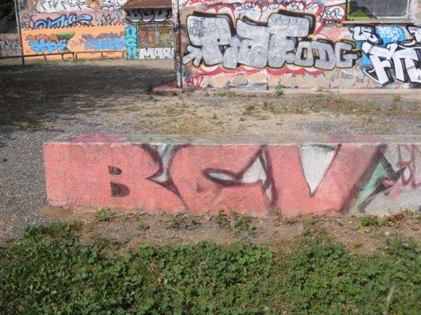 BCV - Piaf - ODG