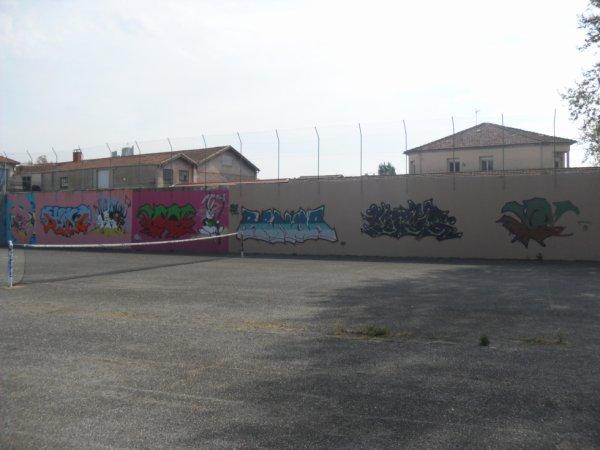 BCV - Dimo - Sizo - Renoa - Encr