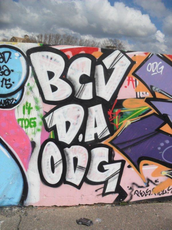 BCV - DA - ODG