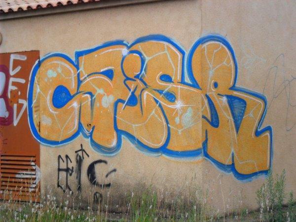 Caisr