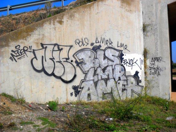 BLS - LMR - Amer - Nier - Enok