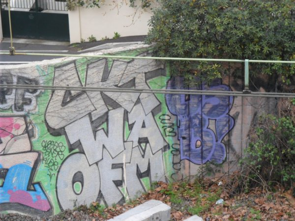 CKT - WA - OFM - OSB