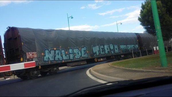Nalide - Tepio - Topten
