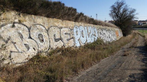 Boce - Polzo - Sirck - Zion - Saee - Enok - Kape - T96