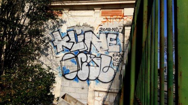 Kline - Ocul