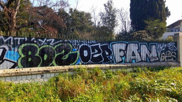 80'Z - OZP - FAN