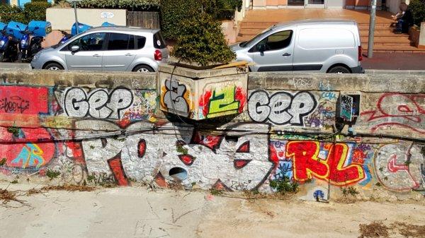 GEP - Pose - RL