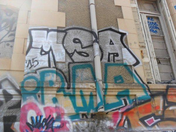 MSA - Irma