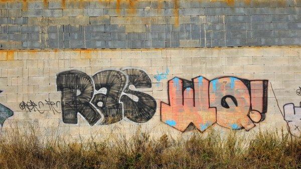 RAS - WQ