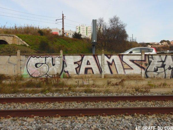 CU - Fams