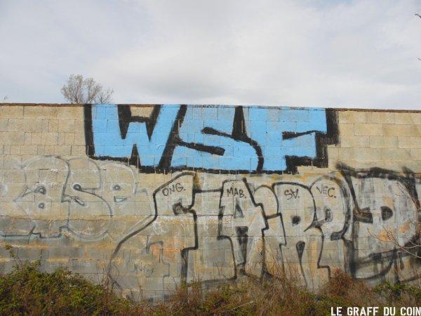 WSF - Flair2