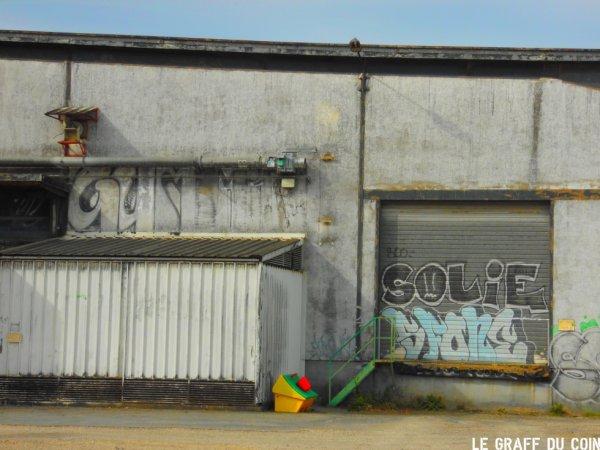 Gummik - Solie - Sfone