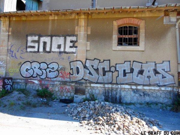 Snoe - Criz - DSC - Clase