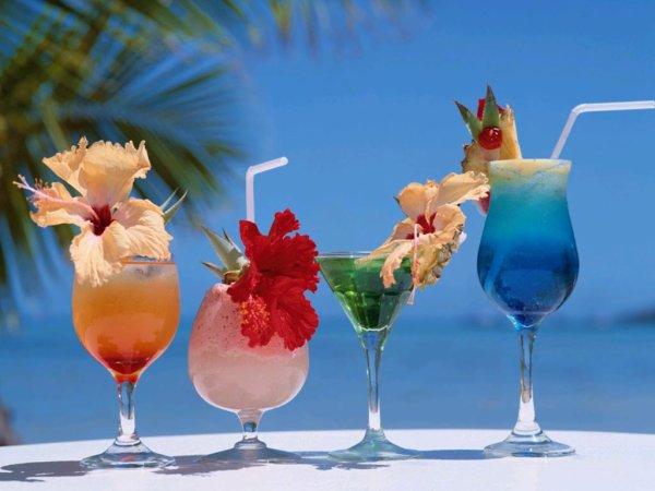 Cocktail - rencontres