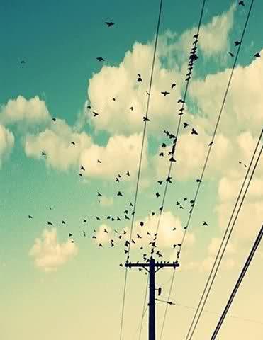 """تغير احساسي ب الاشياء التي تحيط بي وتغيرت الاشياء نفسها [ لا أعلم ماهي , ولا أعلم لماذا ؟! ] لكن..! ..................... """" المؤكد أن هناك تغيير .."""