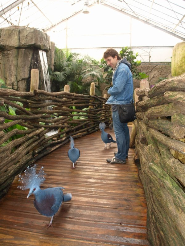 Au Zoo de beauval