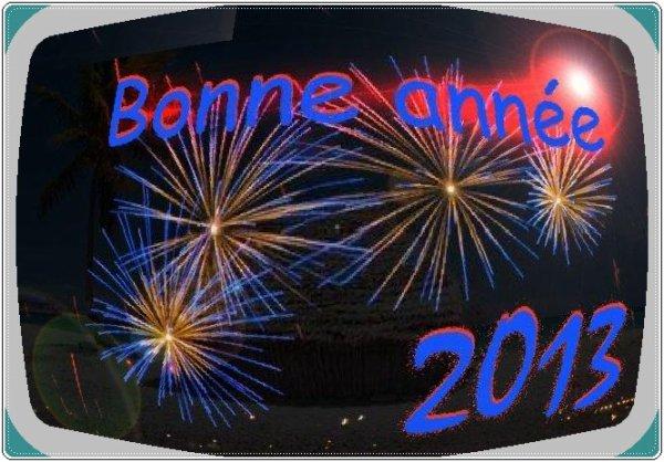 AACF VOUS SOUHAITE UNE TRES BONNE ET HEUREUSE ANNEE 2013