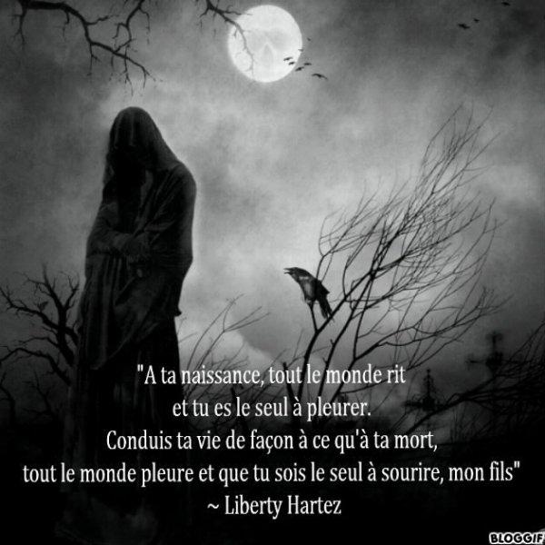 ¤ Chapitre XV Saison II ¤
