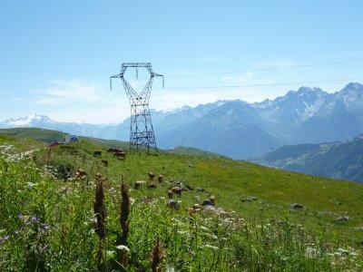 un paysage d'alpage