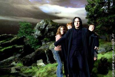 Histoire de Albus Dumbledore et Severus Rogue...