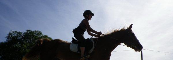 """""""Les chevaux sont fait de la même matière que les rêves"""""""