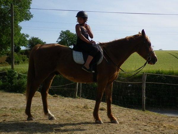 """""""Le bonheur est fait de trois choses sur terre : un beau soleil, une fille, un cheval !"""""""