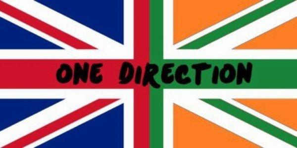 """""""A toutes les Directioners qui aime Niall autant que Nous"""" By Harry, Zayn, Louis et Liam."""