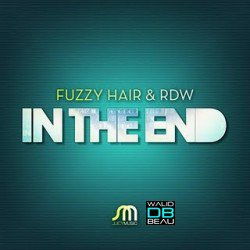 Fuzzy Hair ft RDW / In The End (Reza Remix) (2011)