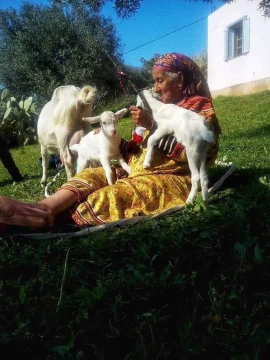Le charme de la vie en Kabylie!❤