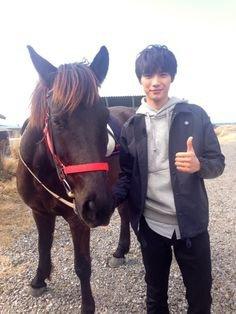 Forcé de monter sur un cheval :,(