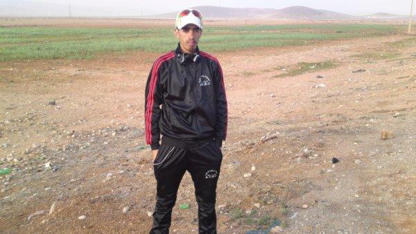hassan 2013