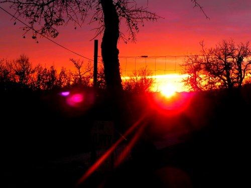 Photographie-JulieG   Coucher de soleil 02/01/1011 Appareil photo Nikon -> Kiff et partage.