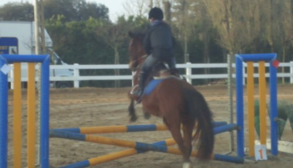 Pendant le tour poney 5